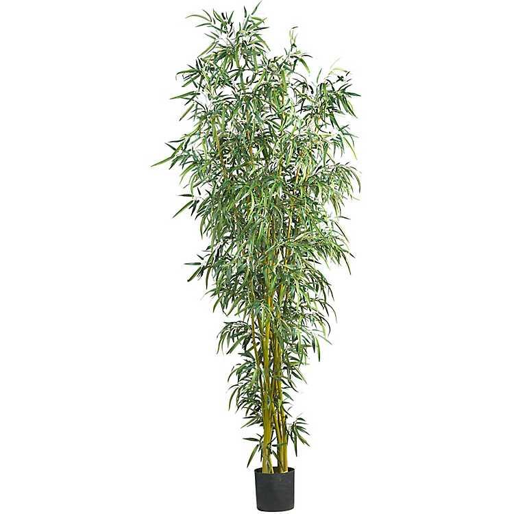 Fancy Style Bamboo Silk Tree 8 Ft Kirklands