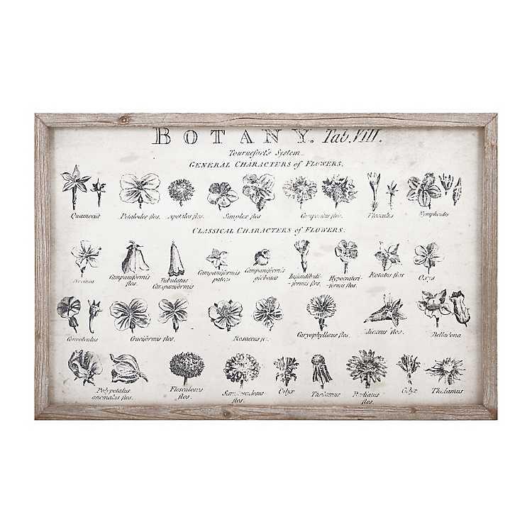 Botanical White Wood Framed Art Print | Kirklands