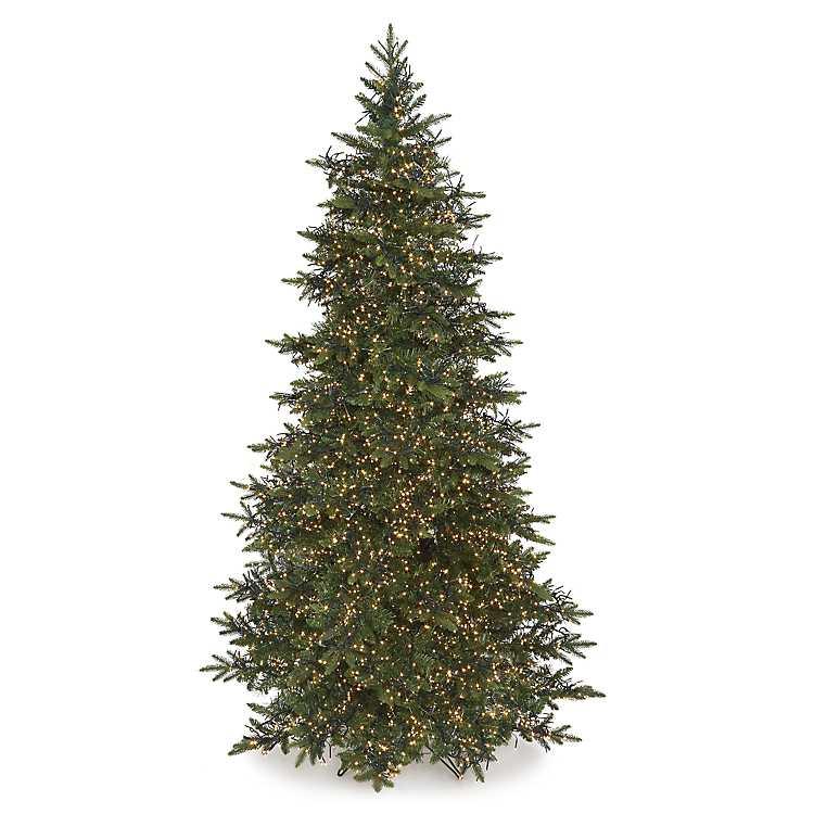 Fraser Fir Christmas Trees.9 Ft Pre Lit Led Fraser Fir Christmas Tree