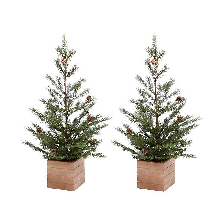 Mini Christmas Trees in Wooden Boxes, Set of 2 | Kirklands