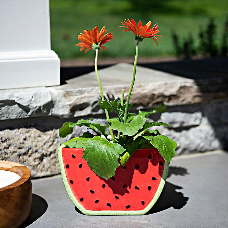 Sliced Watermelon Planter