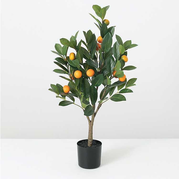 Orange Tree Topiary 32 In Kirklands