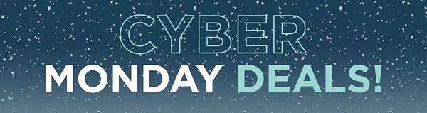 Kirkland's 2016 Cyber Monday Sale!
