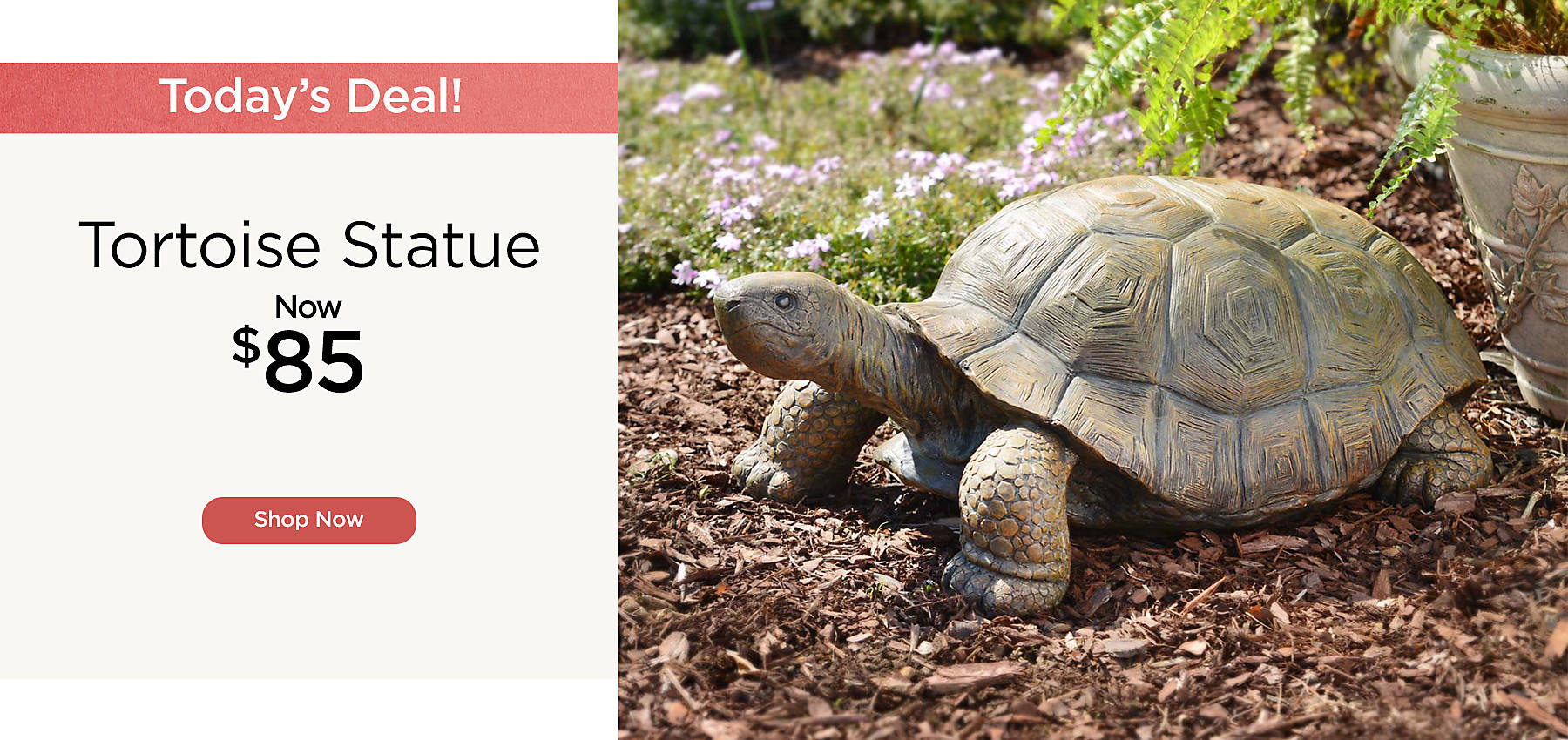 One Day Only - Tortoise Statue Now $85 - Shop Now