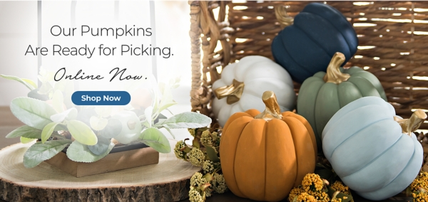 Our Pumpkins Are Ready for Picking. - Online Now. - Shop Fall Decor