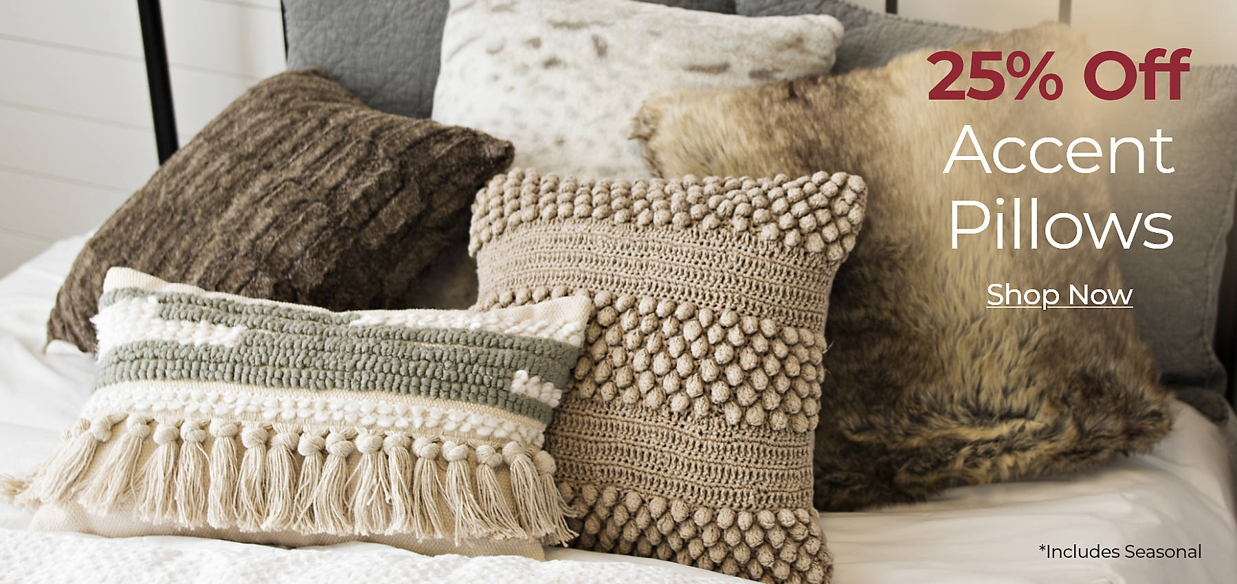 25% off Accent Pillows Includes Seasonal Shop Now