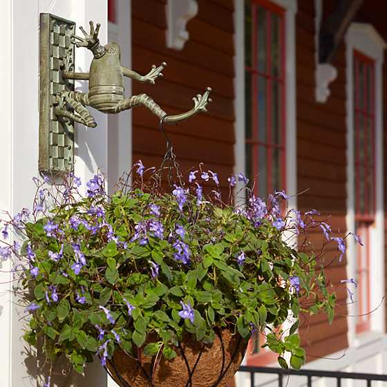 Frog Plant Hanger image two