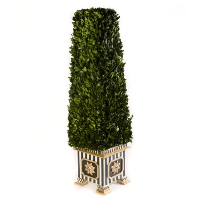 Boxwood Obelisk - Large
