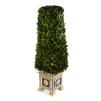 Boxwood Obelisk - Medium
