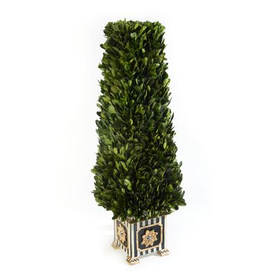 Boxwood Obelisk - Small