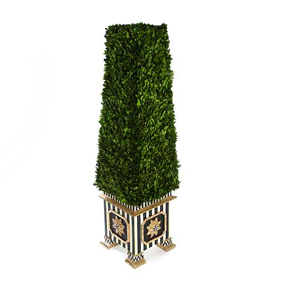 Boxwood Obelisk - Extra Large image one