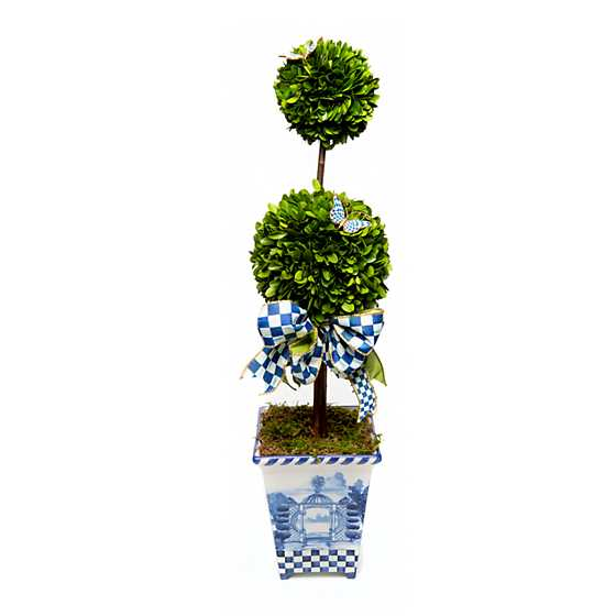Royal Boxwood Topiary - Tall