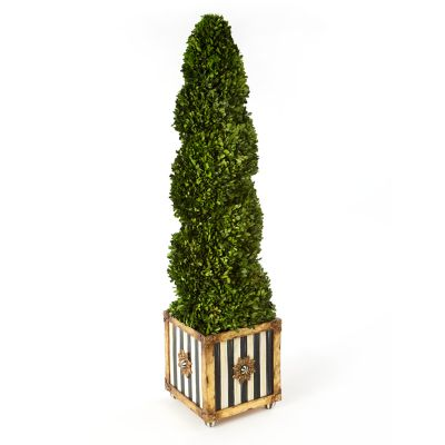 Image for Swirl Topiary