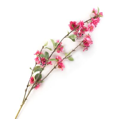Courtly Check Cherry Blossom Spray - Pink