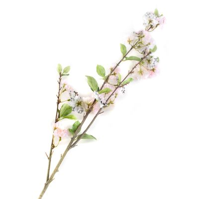 Image for Courtly Check Cherry Blossom Spray - White