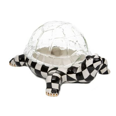 Image for Turtle Terrarium