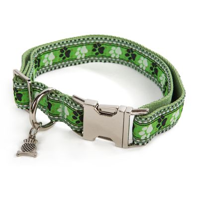 Bow Wow Pet Collar - Medium