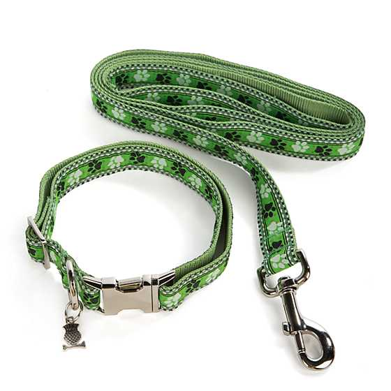 Bow Wow Pet Lead - Medium image four