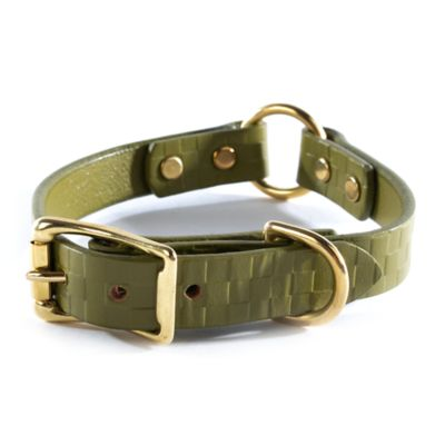 Embossed Leather Pet Collar - Green - Small