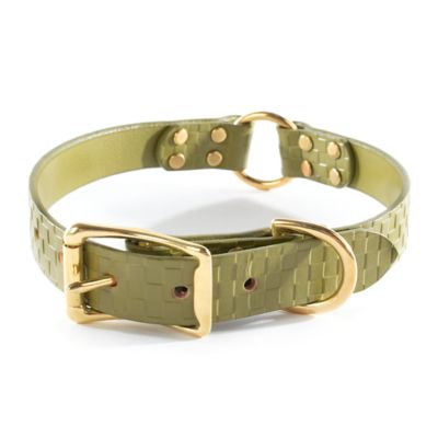 Image for Embossed Leather Pet Collar - Green - Medium
