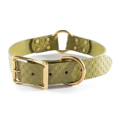 Embossed Leather Pet Collar - Green - Large