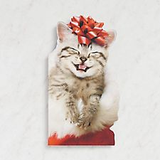 Cat With A Red Bow Card