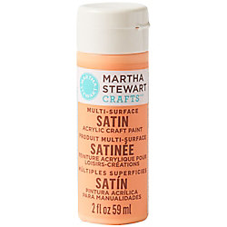 Wild Salmon Satin Acrylic Craft Paint - 2 oz.