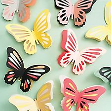 Giant Butterflies Kit