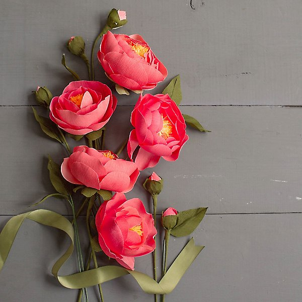 Lovely peony crepe paper flowers displayed with ribbon.