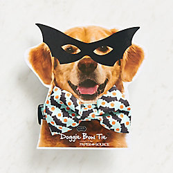 Doggie Halloween Bow Tie