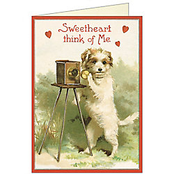 Cavallini Dog with Camera Valentine Card