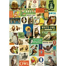Cavallini Vintage Owls Wrapping Paper