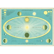 Cavallini Astronomy Wrapping Paper