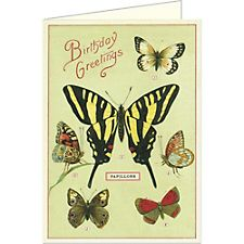 Cavallini Happy Birthday Butterflies Card