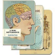 Cavallini Curiosities Mini Notebooks