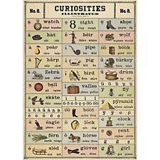 Cavallini Curiosities Wrapping Paper