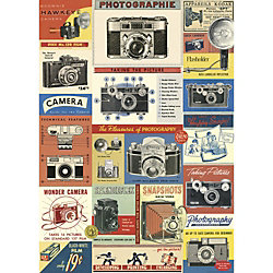 Cavallini Vintage Cameras Wrapping Paper