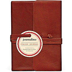 Cavallini Small Persimmon Journalino