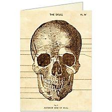 Cavallini The Skull Card