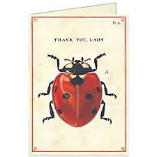 Cavallini Thank You Lady Card