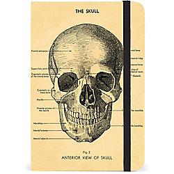 Cavallini Skull Journal