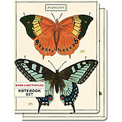 Cavallini Birds and Butterflies Journals