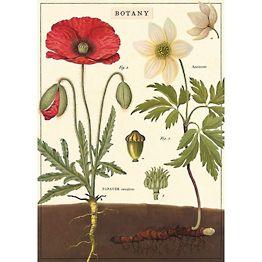 Botany Flat Wrap