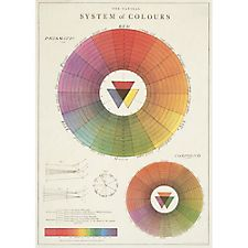 Cavallini Color Wheel Wrapping Paper