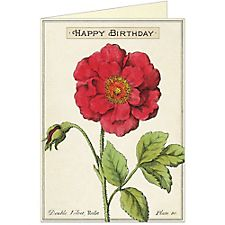 Cavallini Happy Birthday Rose Greeting Card