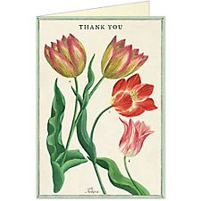 Cavallini Thank You Fleur 3 Greeting Card