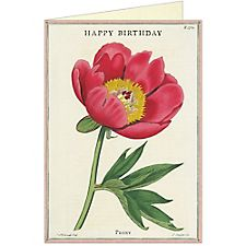 Cavallini Happy Birthday Peony Greeting Card
