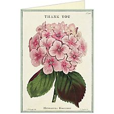 Cavallini Thank You Fleur 1 Greeting Card