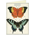 Cavallini Papillon Greeting Card