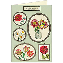 Cavallini Natural History Botany Greeting Card
